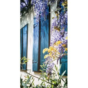 BUITENSCHILDERIJ WISTERIA LUIKEN PB-COLLECTION - 1900217167